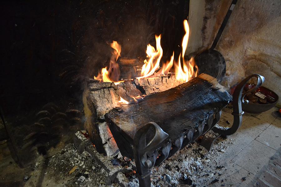 Feu de bois de cheminée